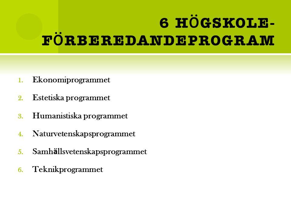 6 H Ö GSKOLE- F Ö RBEREDANDEPROGRAM 1.Ekonomiprogrammet 2.