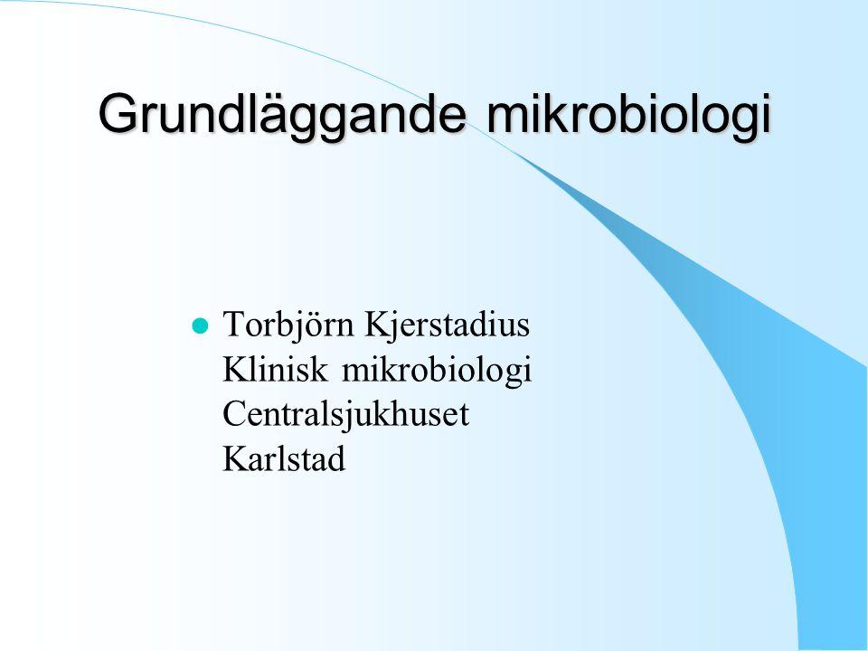 Grundläggande mikrobiologi l Torbjörn Kjerstadius Klinisk mikrobiologi Centralsjukhuset Karlstad