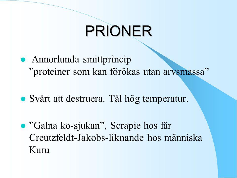 PRIONER l Annorlunda smittprincip proteiner som kan förökas utan arvsmassa l Svårt att destruera.