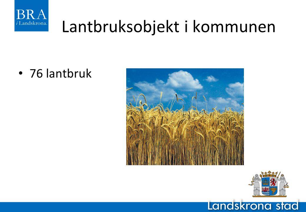 Lantbruksobjekt i kommunen 76 lantbruk