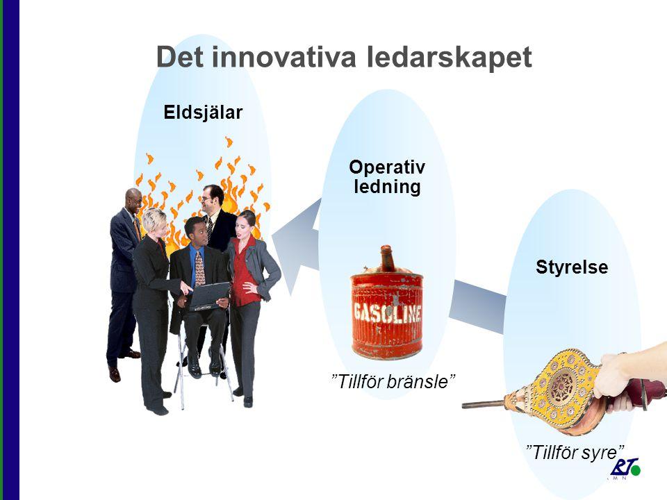 """Styrelse """"Tillför syre"""" Operativ ledning """"Tillför bränsle"""" Eldsjälar Det innovativa ledarskapet"""