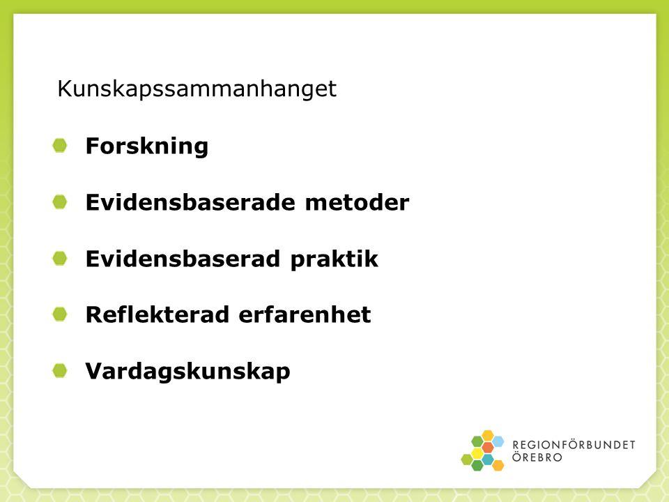 (Lambert m.fl. 1992) Vad förklarar utfallet? © Jan Blomqvist, SoRAD jan.blomqvist@sorad.su.se