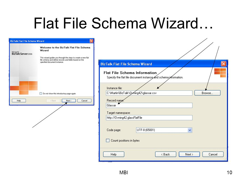 MBl10 Flat File Schema Wizard…