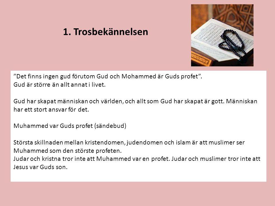 """1. Trosbekännelsen """"Det finns ingen gud förutom Gud och Mohammed är Guds profet"""". Gud är större än allt annat i livet. Gud har skapat människan och vä"""