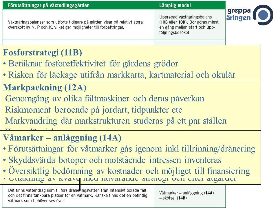Kvävestrategi 11Aa (utan stallgödsel), 11 Ab (med stallgödsel) Kvävestrategi i förhållande till lönsamhet i olika grödor Åtgärdsplan för optimerad kvä