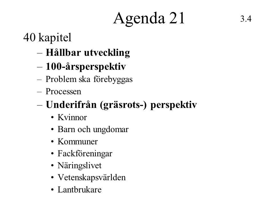 Agenda 21 40 kapitel –Hållbar utveckling –100-årsperspektiv –Problem ska förebyggas –Processen –Underifrån (gräsrots-) perspektiv Kvinnor Barn och ung