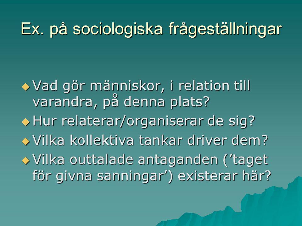 Ex. på sociologiska frågeställningar  Vad gör människor, i relation till varandra, på denna plats?  Hur relaterar/organiserar de sig?  Vilka kollek