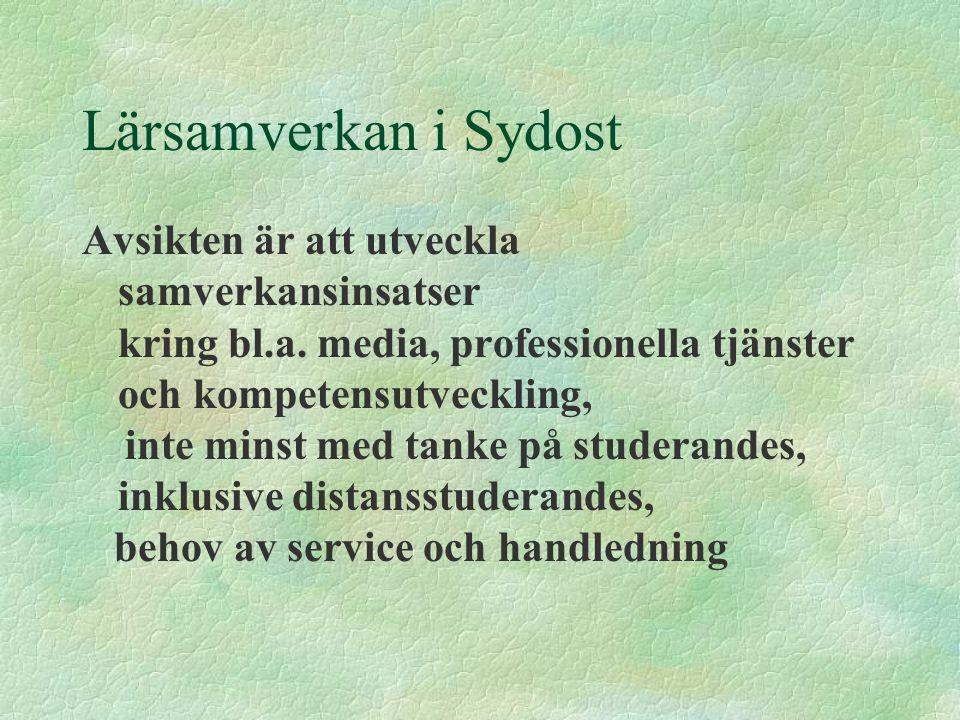 Lärsamverkan i Sydost Avsikten är att utveckla samverkansinsatser kring bl.a. media, professionella tjänster och kompetensutveckling, inte minst med t