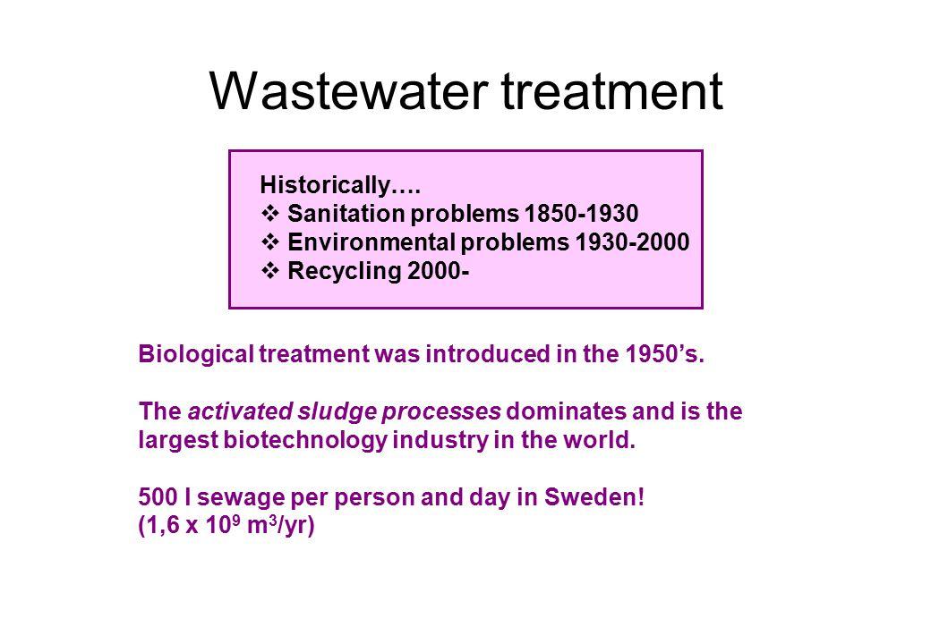 Microorganisms in activated sludge processes Microorganisms are the activated sludge process.