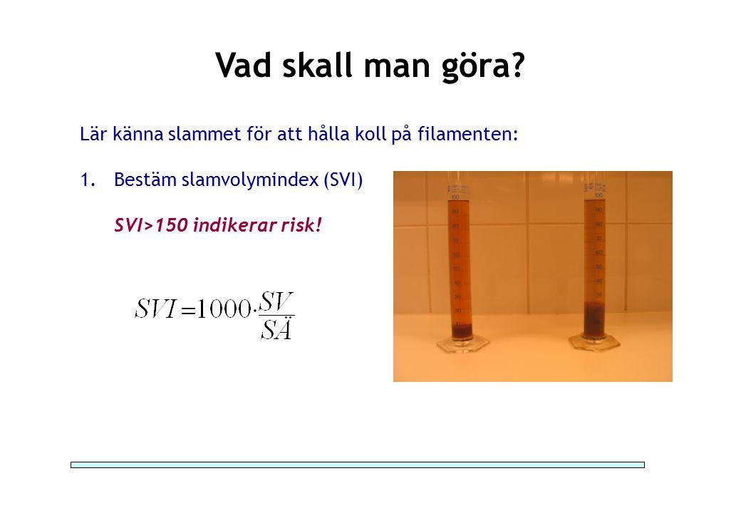 Vad skall man göra? Lär känna slammet för att hålla koll på filamenten: 1.Bestäm slamvolymindex (SVI) SVI>150 indikerar risk!