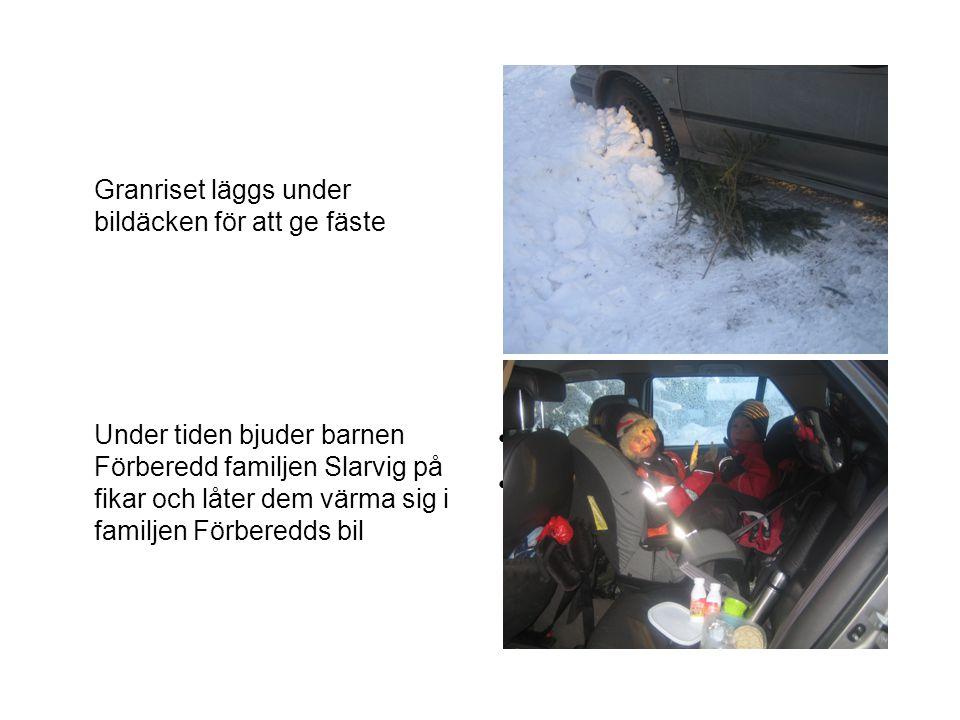 Granriset läggs under bildäcken för att ge fäste Bild i bilen med fika Barn.