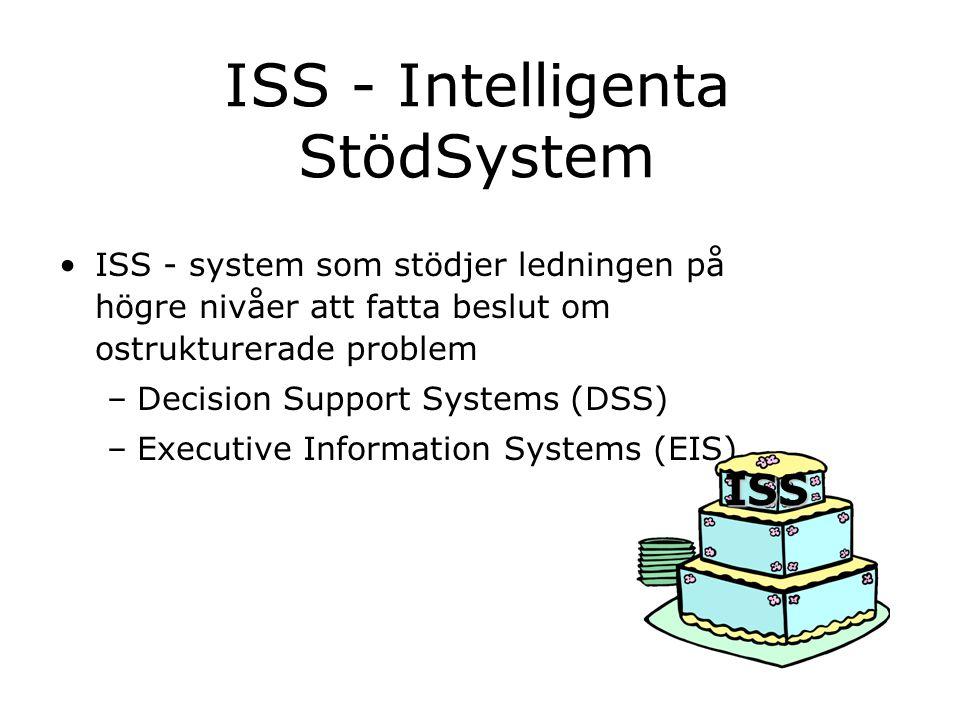 ISS - Intelligenta StödSystem ISS - system som stödjer ledningen på högre nivåer att fatta beslut om ostrukturerade problem –Decision Support Systems