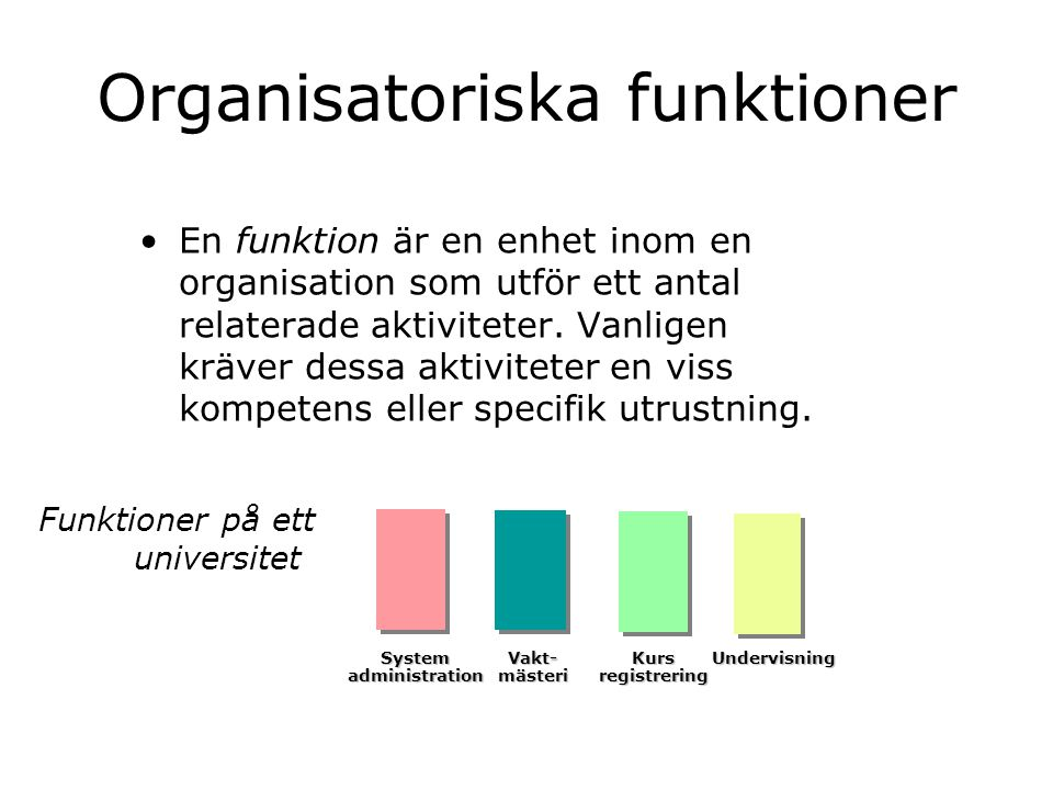 Organisatoriska funktioner En funktion är en enhet inom en organisation som utför ett antal relaterade aktiviteter. Vanligen kräver dessa aktiviteter