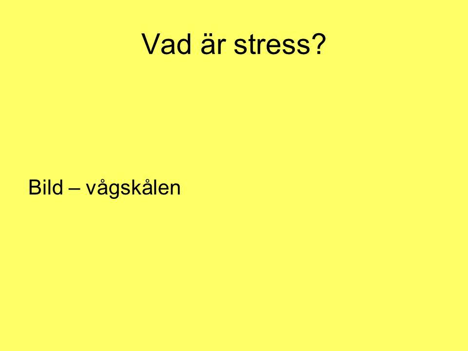 Vad är stress? Scana in bild (Jones, Handbok i stresshantering, 1999)
