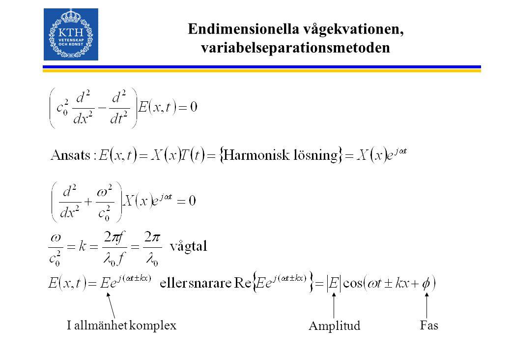 Endimensionella vågekvationen, variabelseparationsmetoden I allmänhet komplex Amplitud Fas