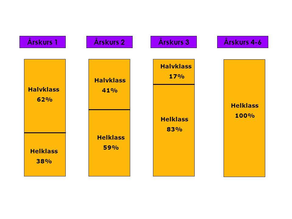 Årskurs 1Årskurs 2Årskurs 3 Halvklass 62% Helklass 38% Halvklass 41% Helklass 59% Helklass 83% Halvklass 17% Helklass 100% Årskurs 4-6