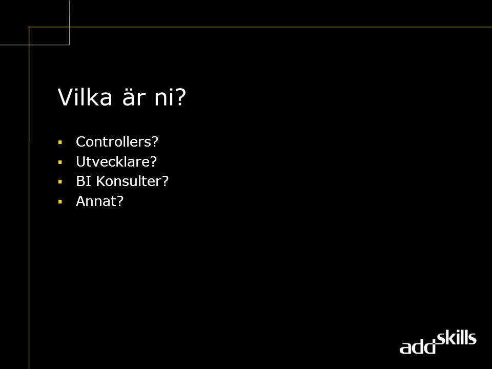 Vilka är ni  Controllers  Utvecklare  BI Konsulter  Annat