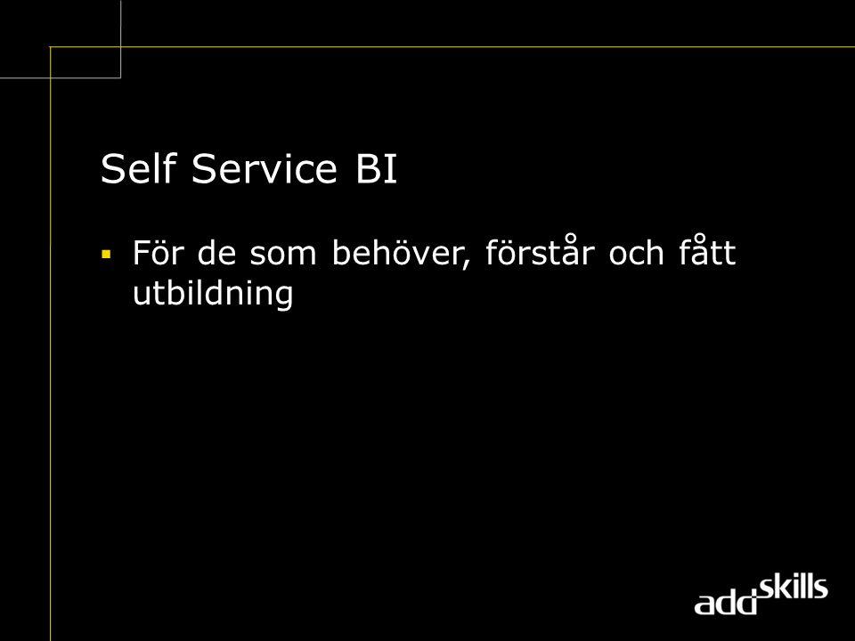 Self Service BI  För de som behöver, förstår och fått utbildning