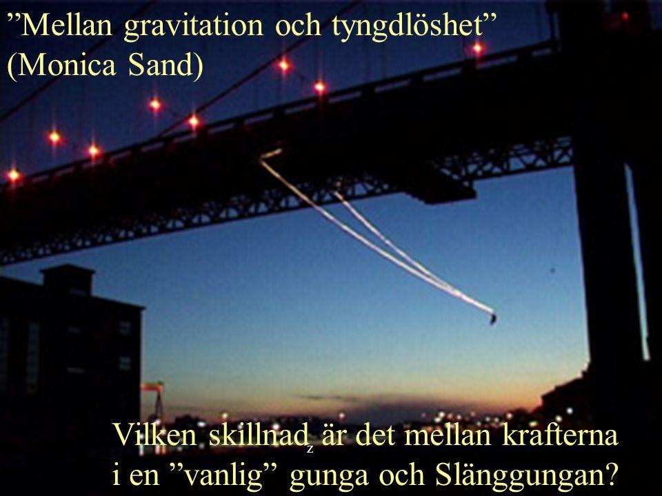 Mellan gravitation och tyngdlöshet (Monica Sand) Vilken skillnad är det mellan krafterna i en vanlig gunga och Slänggungan.