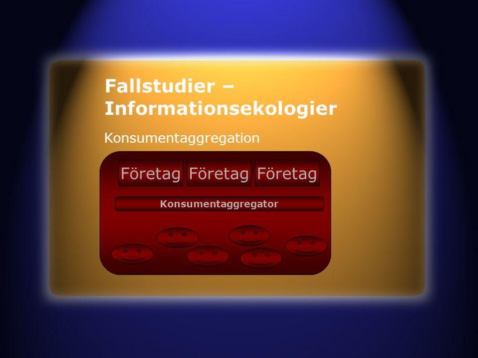 Fallstudier – Informationsekologier Konsumentaggregation Företag Konsumentaggregator