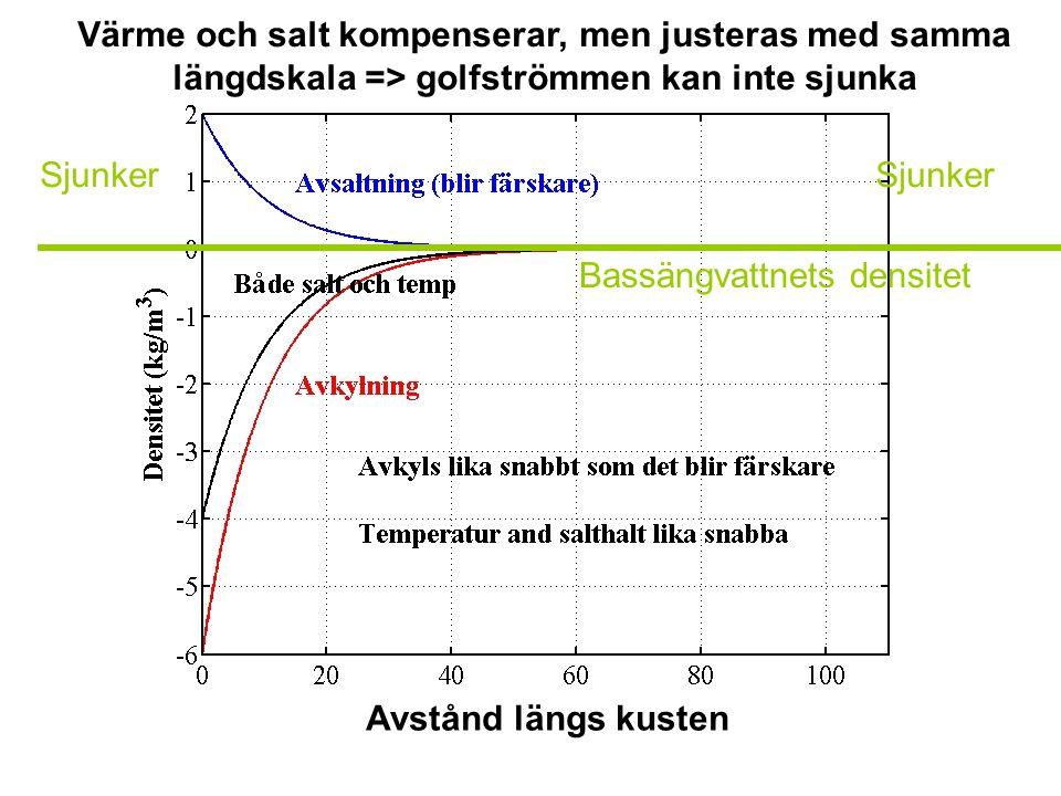 Sjunker Värme och salt kompenserar, men justeras med samma längdskala => golfströmmen kan inte sjunka Avstånd längs kusten Bassängvattnets densitet