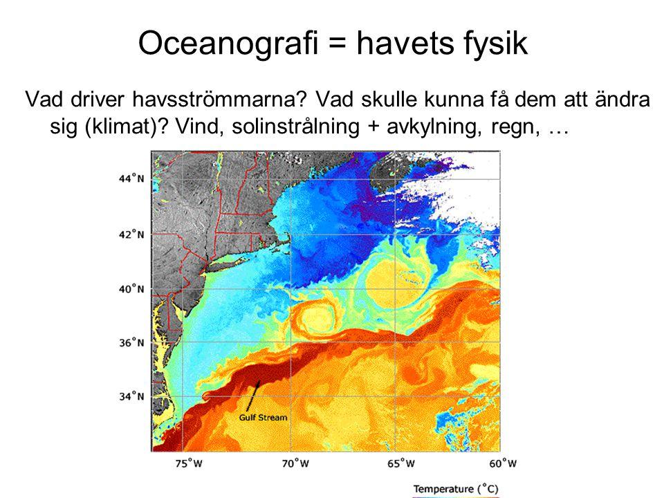Oceanografi = havets fysik Vad driver havsströmmarna.