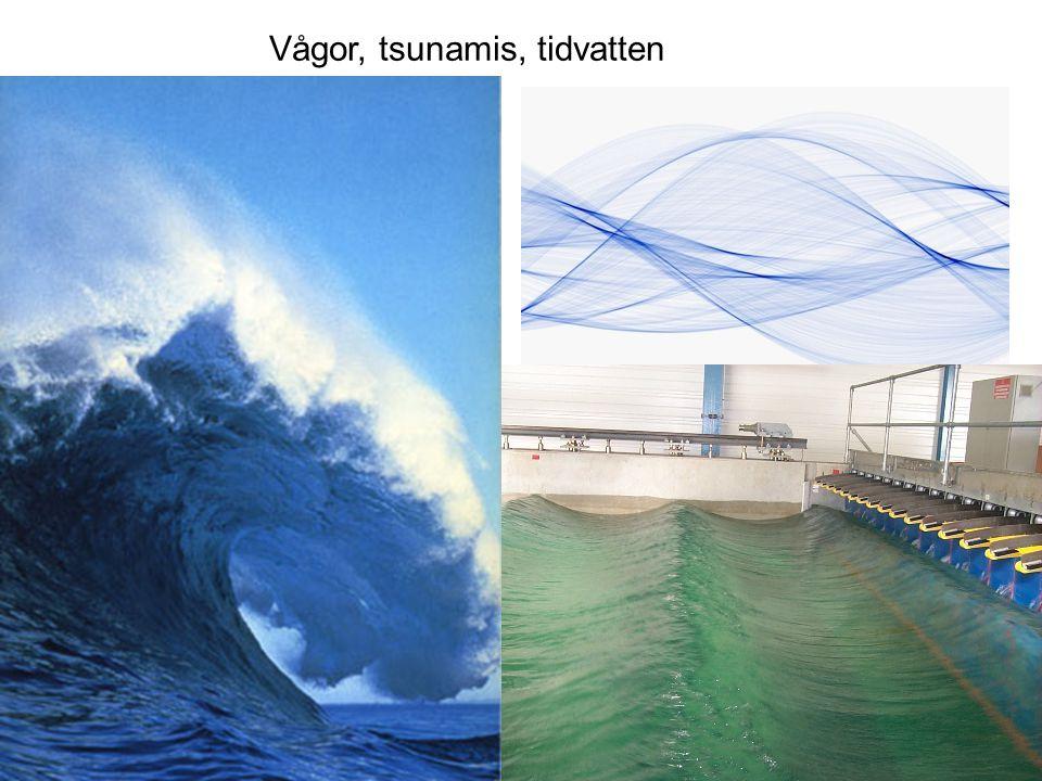 Vågor, tsunamis, tidvatten