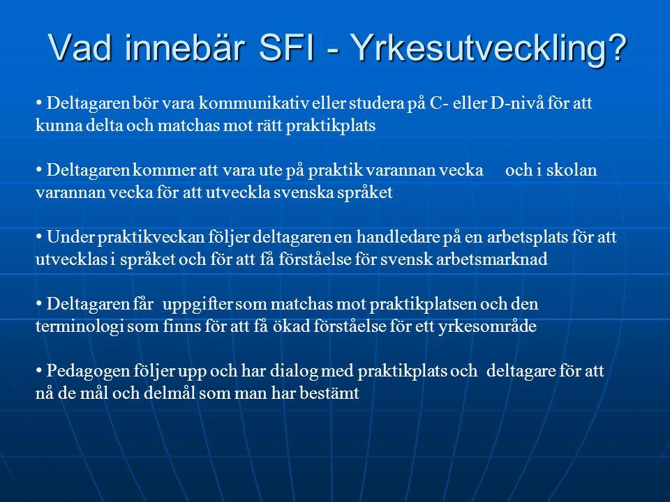 Vad innebär SFI - Yrkesutveckling? Deltagaren bör vara kommunikativ eller studera på C- eller D-nivå för att kunna delta och matchas mot rätt praktikp