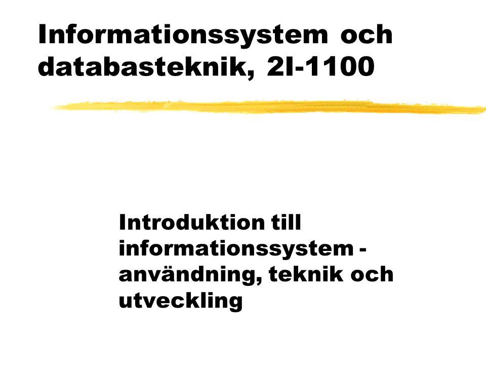 Informationssystem och databasteknik, 2I-1100 Introduktion till informationssystem - användning, teknik och utveckling