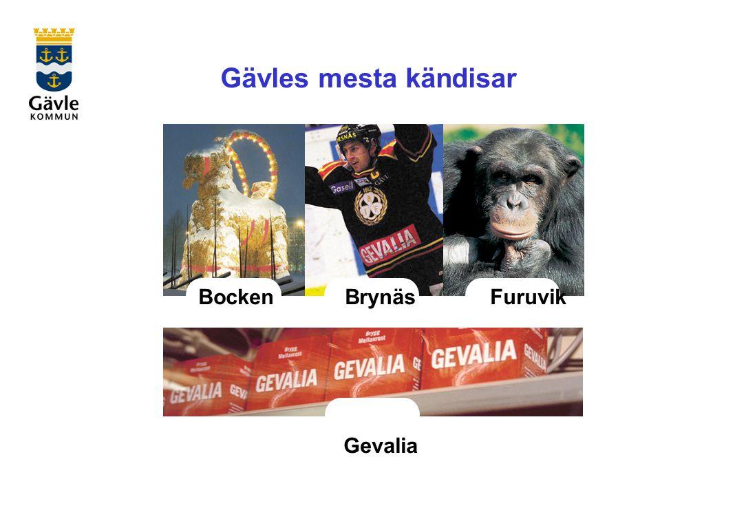 Gävles mesta kändisar BockenBrynäs Furuvik Gevalia