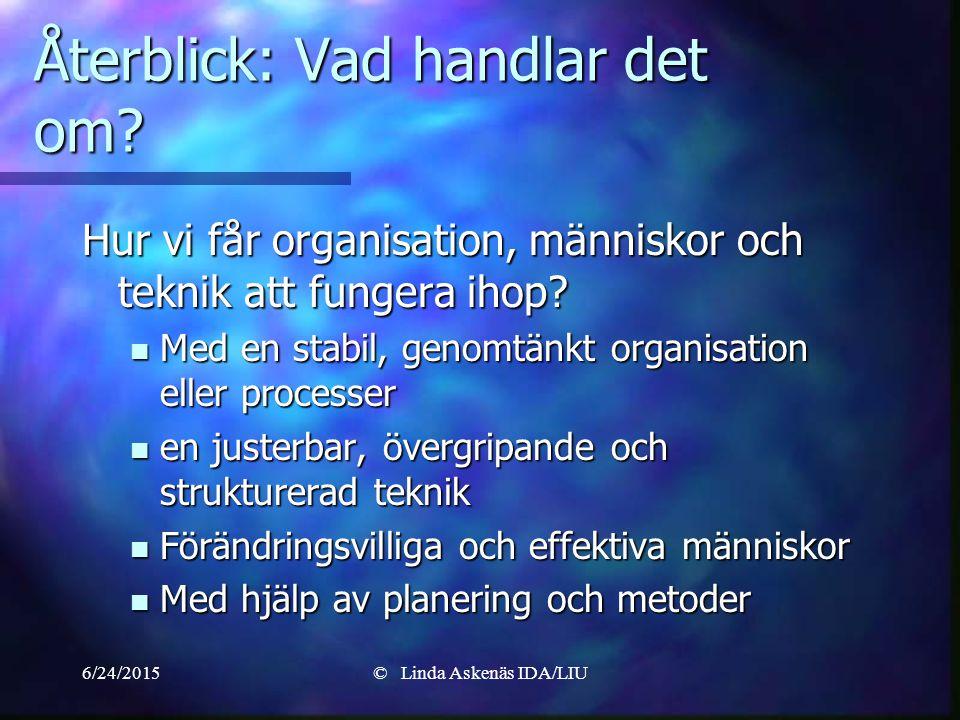 6/24/2015© Linda Askenäs IDA/LIU Återblick: Vad handlar det om.