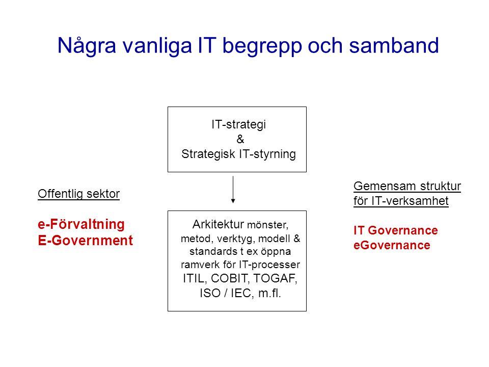 Några vanliga IT begrepp och samband Offentlig sektor e-Förvaltning E-Government IT-strategi & Strategisk IT-styrning Gemensam struktur för IT-verksam