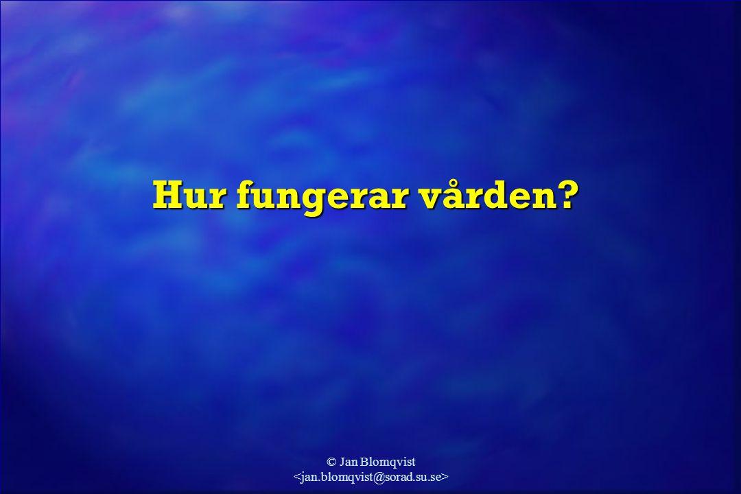 © Jan Blomqvist (Blomqvist & Wallander, 2004) Vad gör man inom vården.