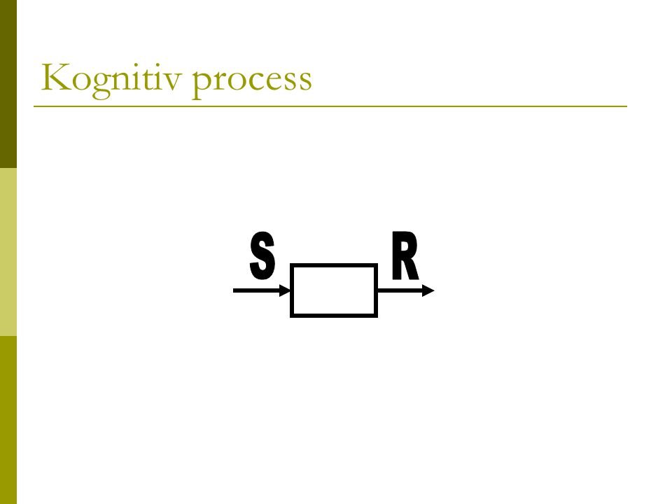Kognitiv process