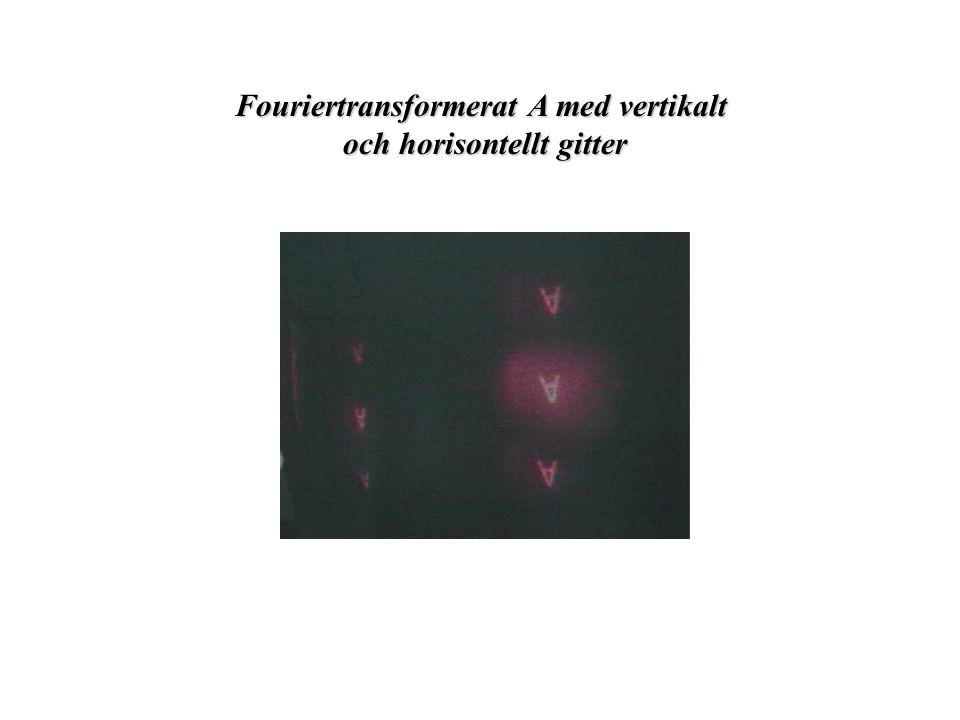 Fouriertransformerat A med vertikalt och horisontellt gitter