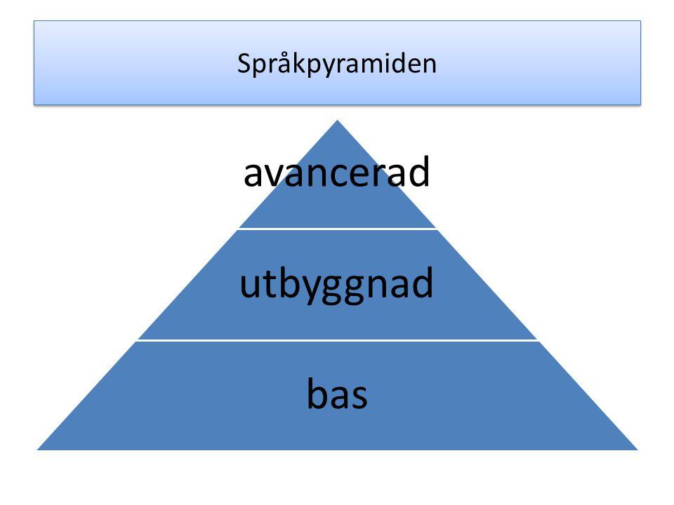 Språkliga basen språkets ljudsystem böjningsmönster syntax basordförråd ca 8-10 000 ord förmåga att berätta enkla berättelser