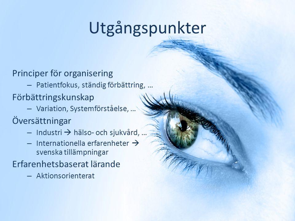 CHALMERS Bo Bergman SKF Professor 9 Professionell kunskap Förbättringskunskap Specialist kunskap Skicklighet Värderingar, etik Förståelse för Variatio