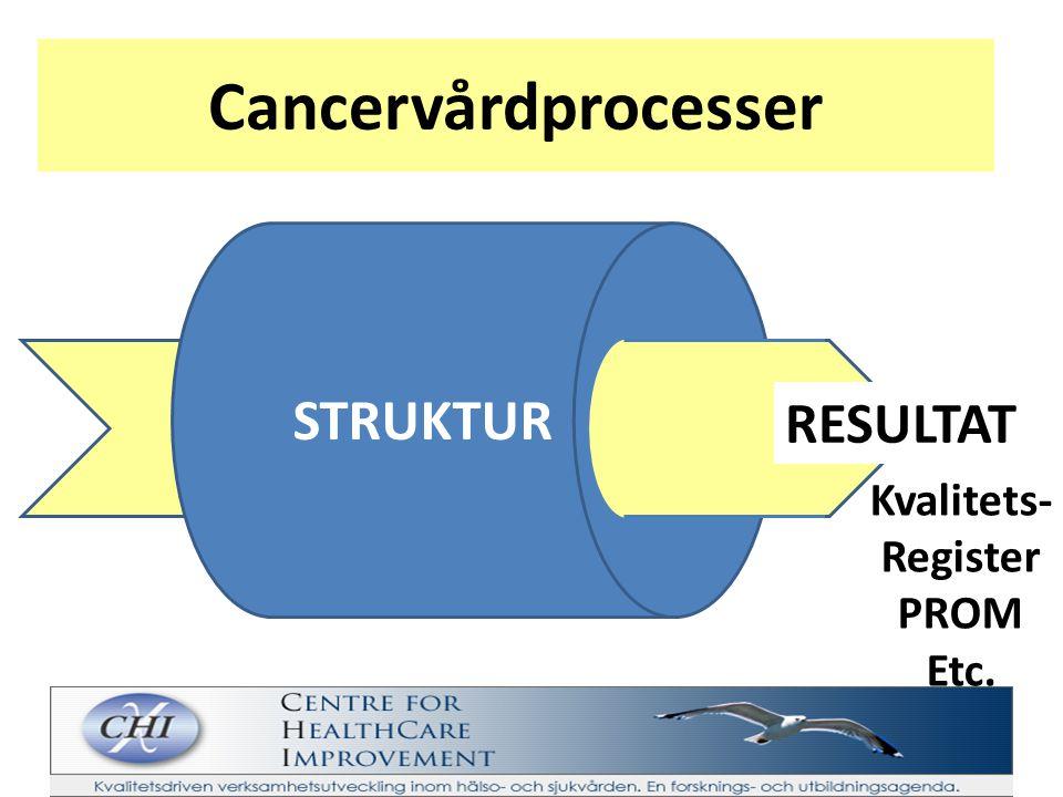 Cancervårdprocesser FÖRBLI FRISK UPP- TÄCKA FÅ DIAGNOS FÅ BEHAND- LING/ VÅRD ÖVER- LEVA FÅ ETT VÄRDIGT SLUT ur patientens/medborgarens perspektiv