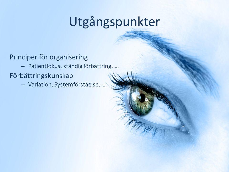 Utgångspunkter Principer för organisering – Patientfokus, ständig förbättring, … Förbättringskunskap – Variation, Systemförståelse, …