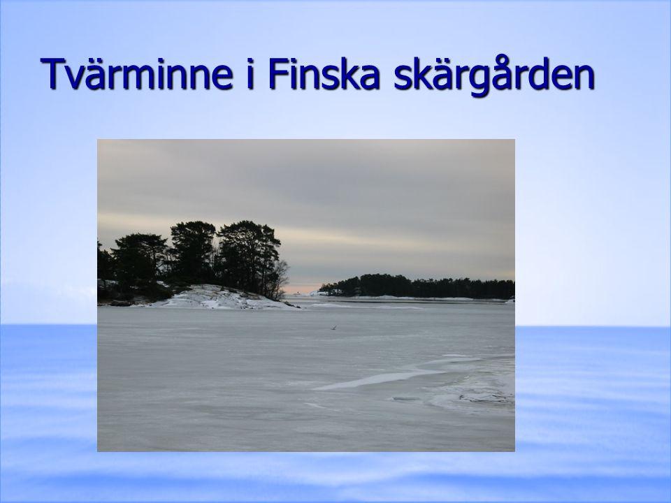 Tvärminne i Finska skärgården