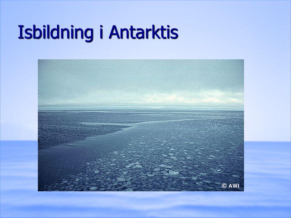 Isbildning i Antarktis