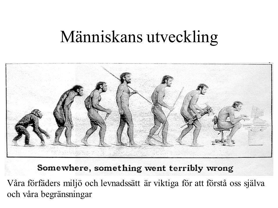 Människans utveckling Somewhere, something went terribly wrong Våra förfäders miljö och levnadssätt är viktiga för att förstå oss själva och våra begränsningar
