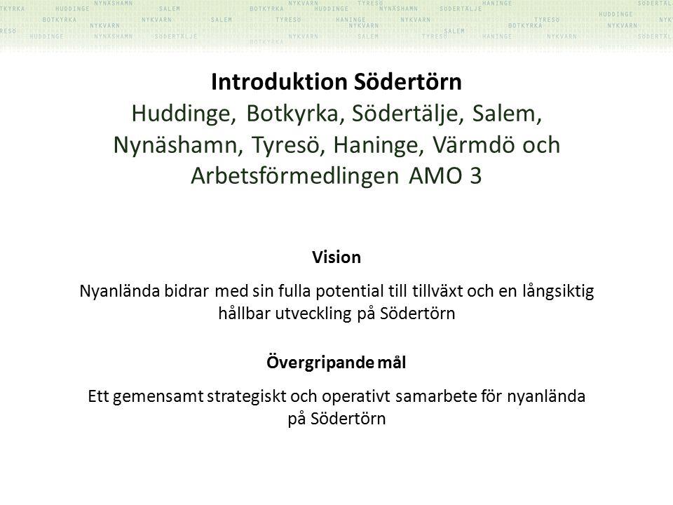 Introduktion Södertörn Huddinge, Botkyrka, Södertälje, Salem, Nynäshamn, Tyresö, Haninge, Värmdö och Arbetsförmedlingen AMO 3 Vision Nyanlända bidrar med sin fulla potential till tillväxt och en långsiktig hållbar utveckling på Södertörn Övergripande mål Ett gemensamt strategiskt och operativt samarbete för nyanlända på Södertörn
