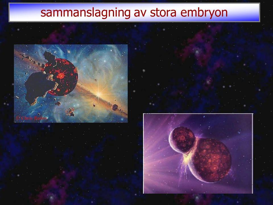 sammanslagning av stora embryon
