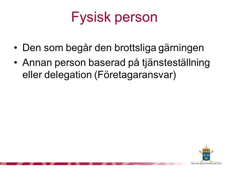 Den som begår den brottsliga gärningen Annan person baserad på tjänsteställning eller delegation (Företagaransvar) Fysisk person