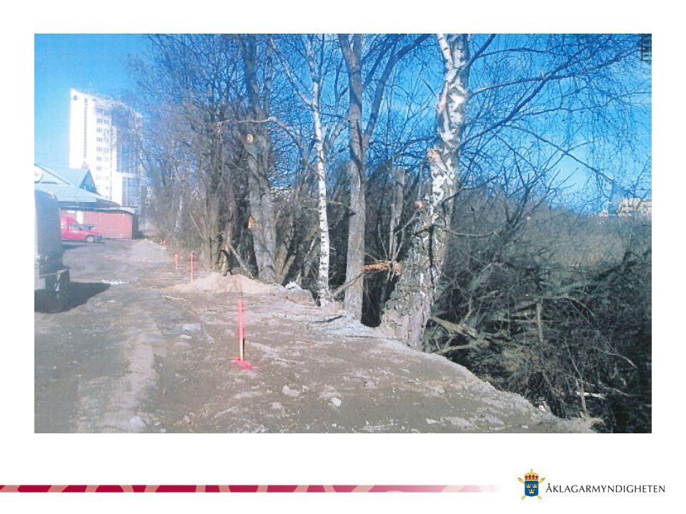 Bevisning Beslut om bildande av naturreservat Reservatsföreskrift Fotografier -Kommun -Polis -Vittne Vittnen -Miljöinspektör -Anställda vid annat bolag på plats