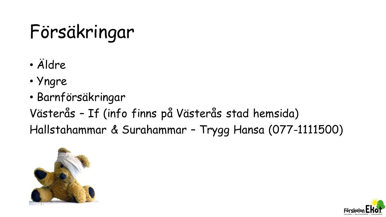 Försäkringar Äldre Yngre Barnförsäkringar Västerås – If (info finns på Västerås stad hemsida) Hallstahammar & Surahammar – Trygg Hansa (077-1111500)