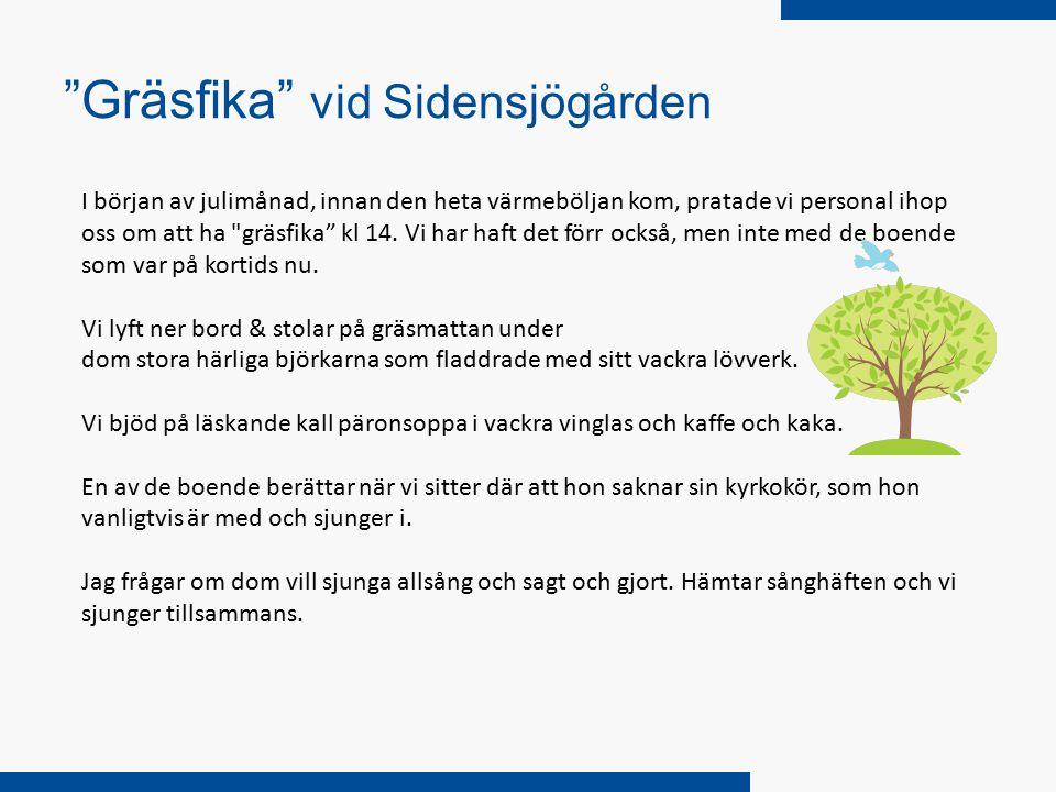Gräsfika vid Sidensjögården I början av julimånad, innan den heta värmeböljan kom, pratade vi personal ihop oss om att ha gräsfika kl 14.
