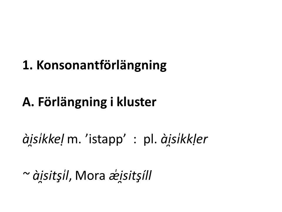 1. Konsonantförlängning A. Förlängning i kluster ài̯si̍kkel ̣ m.