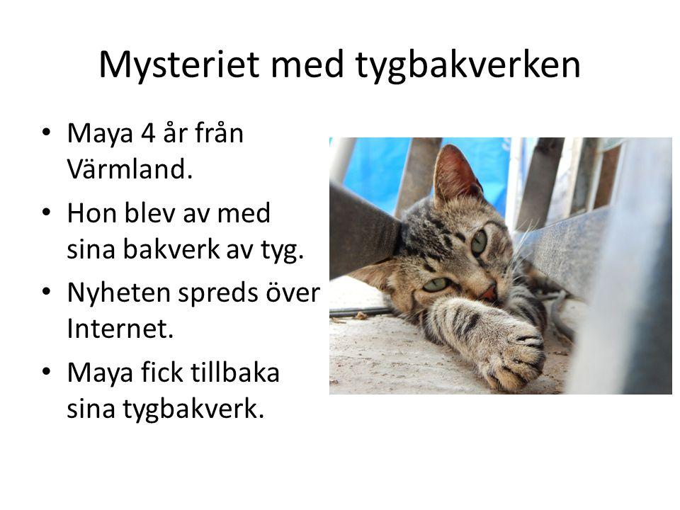 Mysteriet med tygbakverken Maya 4 år från Värmland.